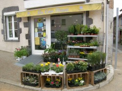 OPPORTUNITE:MAGASIN DE FLEURS.(42)